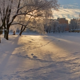 saint-petersburg-yusupovskiy-sad-winter-sun-shadows