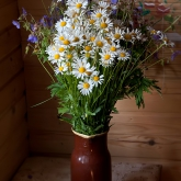 bouquet-of-wildflowers