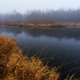 autumn-mist-river-rain
