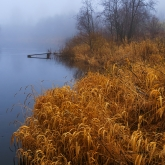 autumn-mist-river
