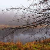russian-countryside-river-mist-tree-drops