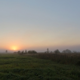 sunrise-meadow_2